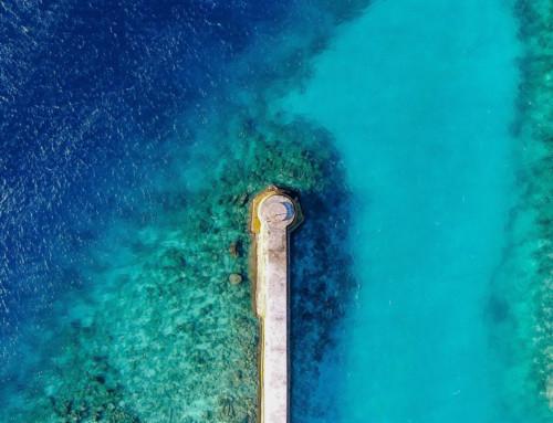 Coral Reef Vol.1