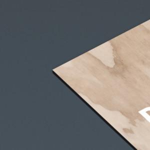 business-card-mockup-1