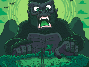 illustration-kong-skull-island-green-variation-large