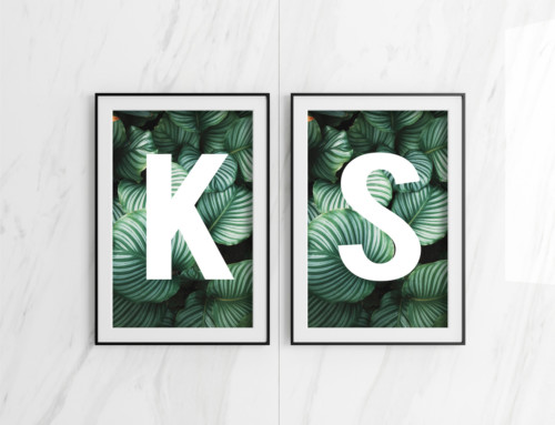 Double Poster Frame