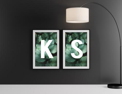 Double Dark Poster Frame